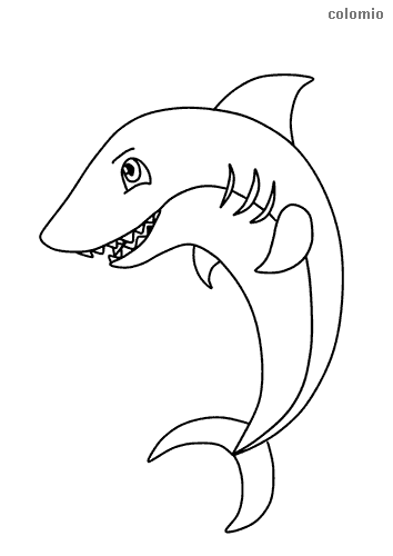 Simple shark coloring page