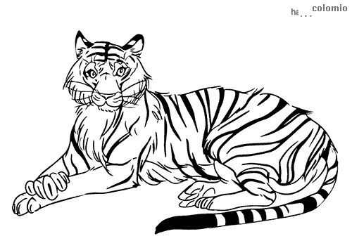 Tiger lying down coloring page