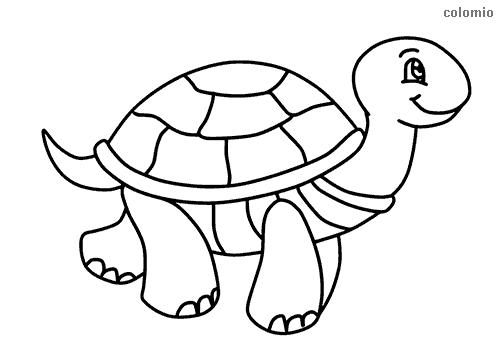 Dibujo de Tortuga sonriendo para colorear