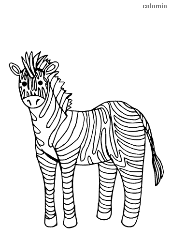 Simple zebra coloring page