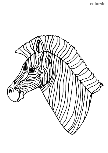 Zebra head coloring sheet