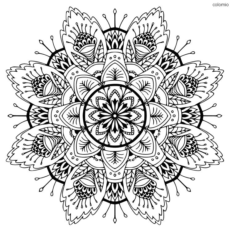Flower Mandala coloring sheet