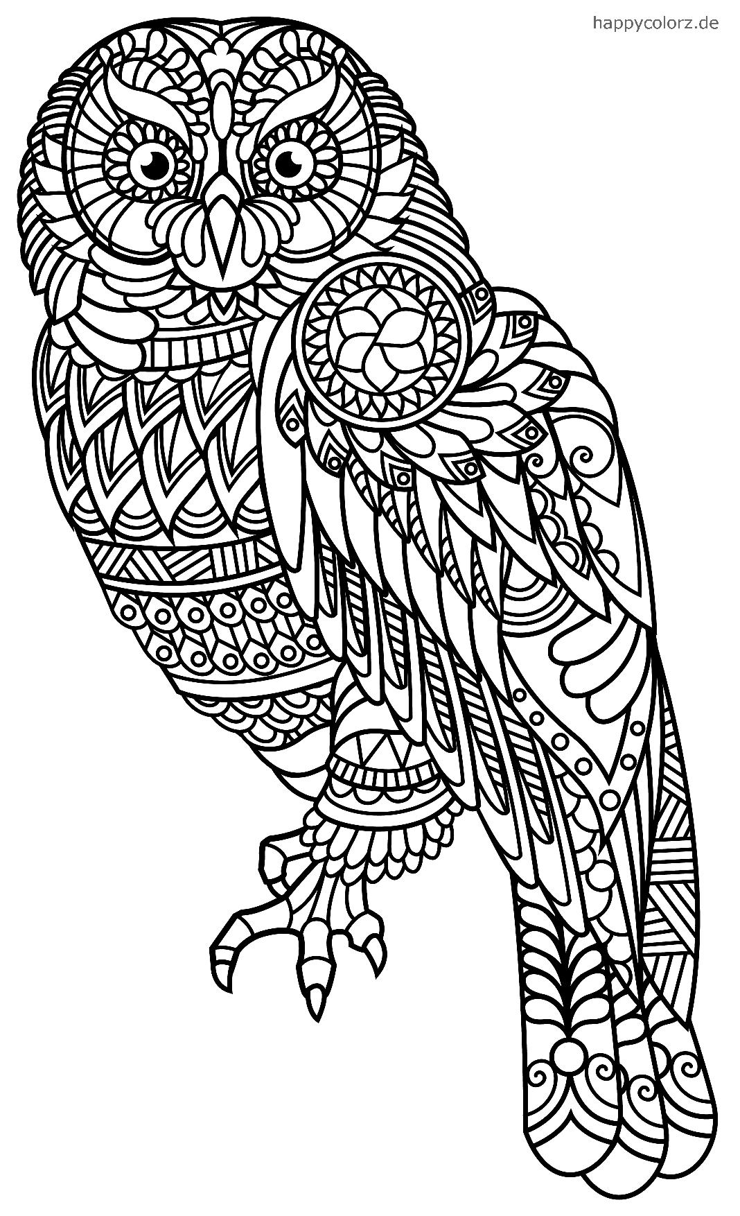 Búho Mandala para colorear