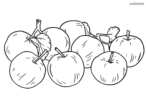 Bunch of apples coloring page