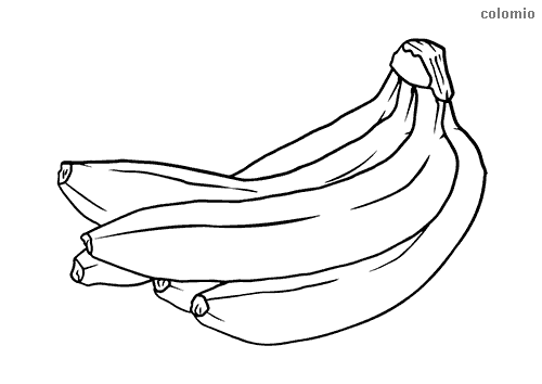 Pair of bananas coloring page