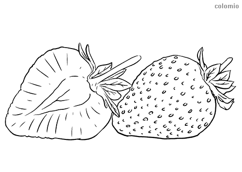 Strawberry cross-section coloring page