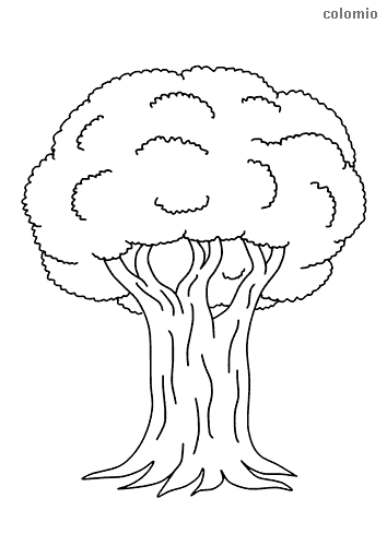 Mysterious tree coloring page